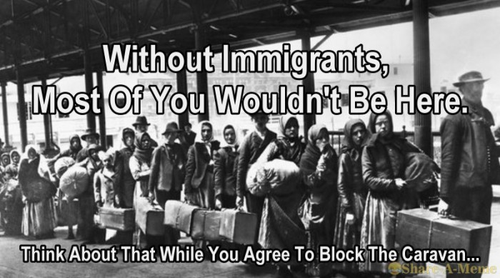 Without Immigrants Most Of You Would Not Be Here